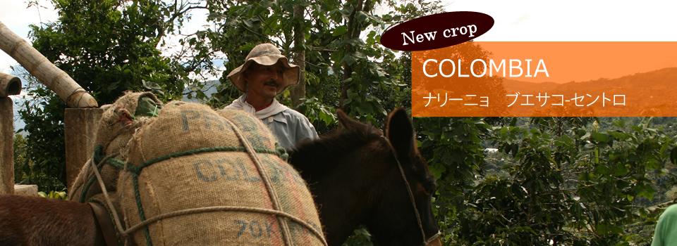 http://mcoffee0201.shop26.makeshop.jp/shopbrand/ethiopia/
